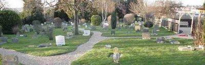 9. today the pdsa cemetery is a much more mature place
